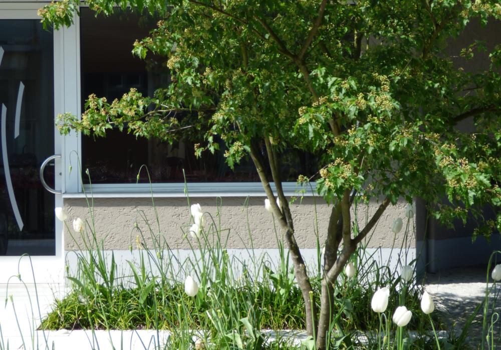 Bürogebäude Adliswil